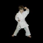 Кимоно для каратэ + пояс Arawaza Lightweight